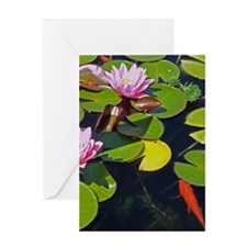 Lily and Koi Greeting Cards