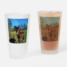 Brown donkey in field Drinking Glass