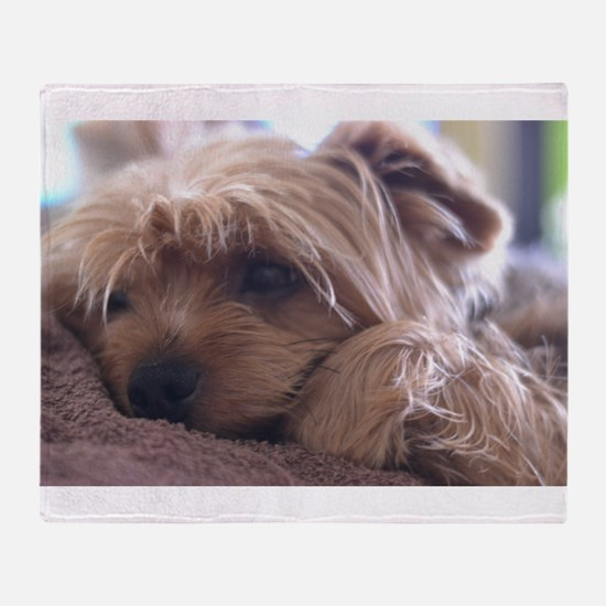 Cute Yorkie Throw Blanket