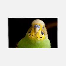 Green Parakeet Area Rug