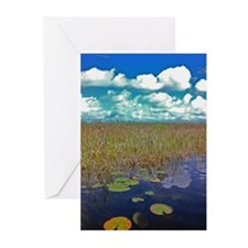 Everglades Bird Greeting Cards
