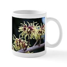 Witch Hazel Small Mug
