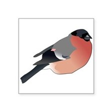 Eurasian Bullfinch Sticker