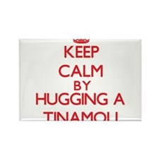Keep calm by hugging a Tinamou Magnets