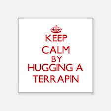 Keep calm by hugging a Terrapin Sticker