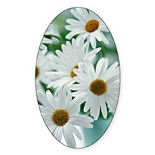 Daisies in Bloom Decal