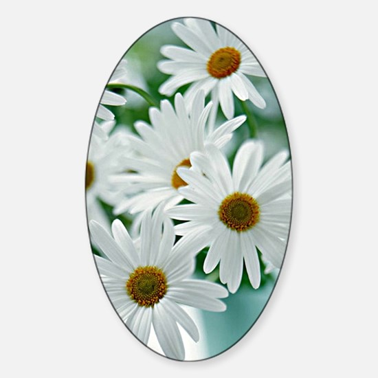 Daisies in Bloom Sticker (Oval)