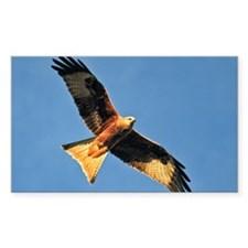 Flying Red Kite Decal