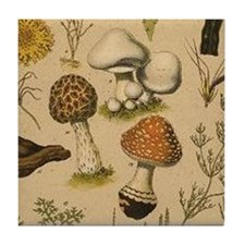 Old Mushrooms Tile Coaster