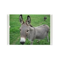 Miniature Donkey Rectangle Magnet