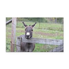 Miniature Donkey II Rectangle Car Magnet