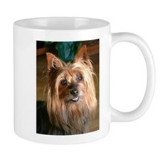 Australian Silky Terrier headstudy Mugs
