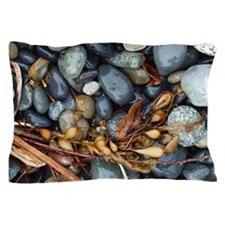 Seaweed And Stones 2 Pillow Case