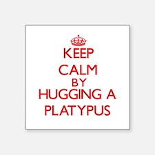 Keep calm by hugging a Platypus Sticker