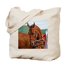 WHAT AN AWESOME BIRD - MINE THAT BIRD Tote Bag