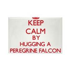 Keep calm by hugging a Peregrine Falcon Magnets