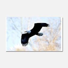 Bald Eagle Car Magnet 20 x 12