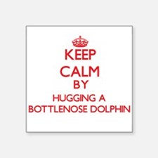 Keep calm by hugging a Bottlenose Dolphin Sticker