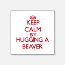Keep calm by hugging a Beaver Sticker