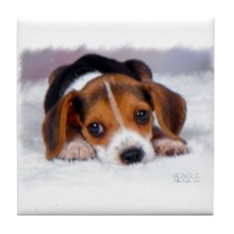 Pocket Beagle Tile Coaster
