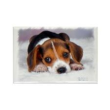 Pocket Beagle Rectangle Magnet
