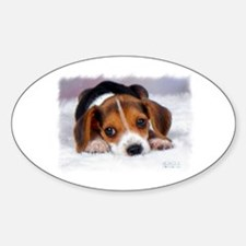 Pocket Beagle Oval Decal