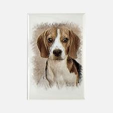 Hound Beagle Rectangle Magnet