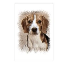 Hound Beagle Postcards (Package of 8)