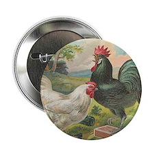 """Vintage Rooster Chicken Cigar Label 2.25"""" Button"""