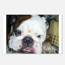 English bulldog on a rug - Detail Postcards (Packa