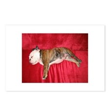 English bulldog puppy sleeping on a red couch Post