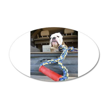 English bulldog with tug toy Wall Decal