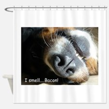 Meas nose knows! Shower Curtain