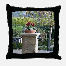 Napa Valley, CA beautiful Day Throw Pillow