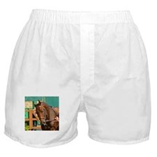 MINE THAT BIRD - GORGEOUS BIRD Boxer Shorts