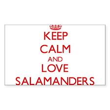Keep calm and love Salamanders Decal