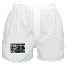 DSC_4992 Boxer Shorts