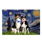 Starry/2 Aussies (scarves) Postcards (Package of 8