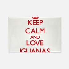 Keep calm and love Iguanas Magnets