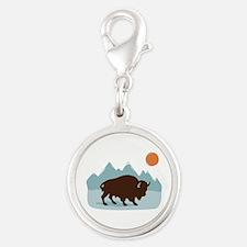 Buffalo Mountains Charms