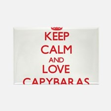 Keep calm and love Capybaras Magnets