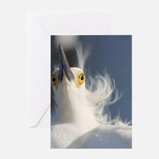 Cute Snowy egret beach Greeting Card