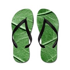 Veined Green Leaf Flip Flops