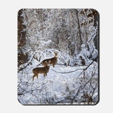 A Winter Wonderland Mousepad