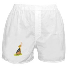 Wirehair Fox Terrier Boxer Shorts
