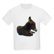 donkey colt T-Shirt