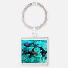 Cool Sharks Keychains