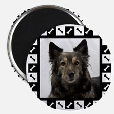 Maia--Dog Portrait with Black and White Bor Magnet