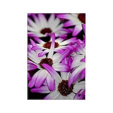 Summer flower Rectangle Magnet