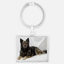 Maia--Keeshond/Cattle Dog/Borde Landscape Keychain